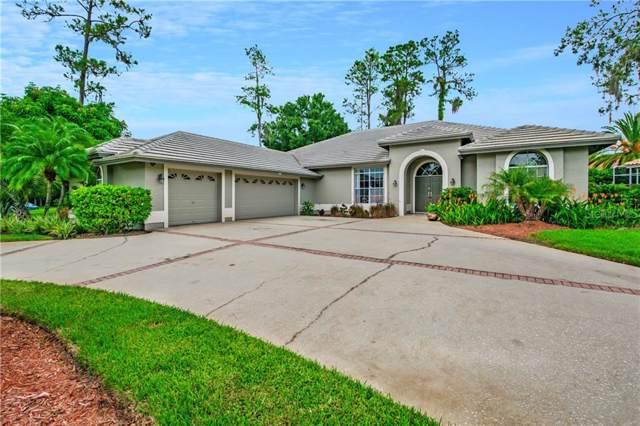 1367 Briargrove Way, Oldsmar, FL 34677 (MLS #U8052698) :: Cartwright Realty