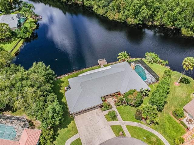 3816 Louis Circle, Tarpon Springs, FL 34688 (MLS #U8052961) :: The Duncan Duo Team