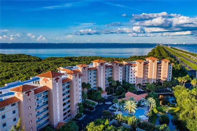 12055 Gandy Boulevard N #282, St Petersburg, FL 33702 (MLS #U8053979) :: Armel Real Estate