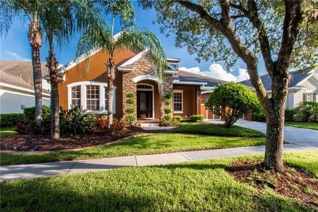 14608 Tudor Chase Drive, Tampa, FL 33626 (MLS #U8054273) :: Burwell Real Estate