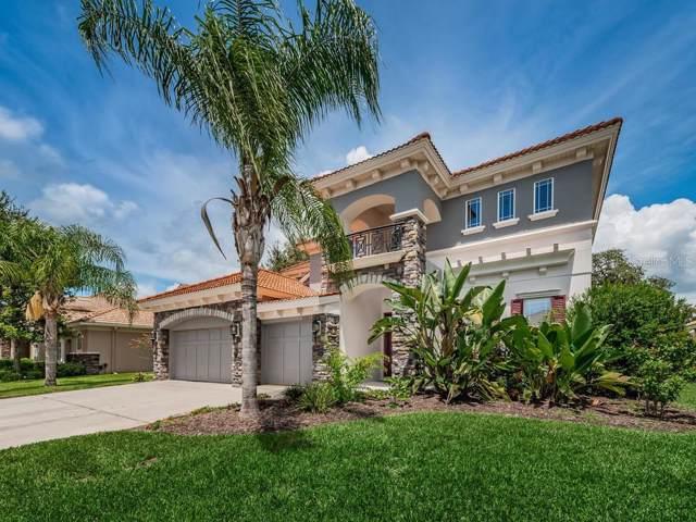 11317 Biddeford Place, New Port Richey, FL 34654 (MLS #U8055031) :: Lovitch Realty Group, LLC