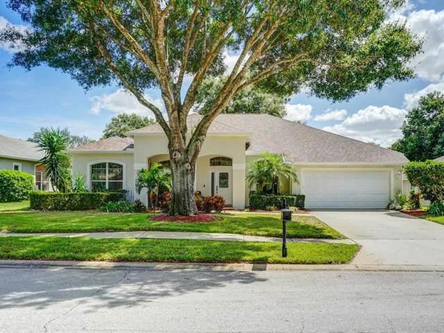 3672 Siena Lane, Palm Harbor, FL 34685 (MLS #U8055250) :: Delgado Home Team at Keller Williams