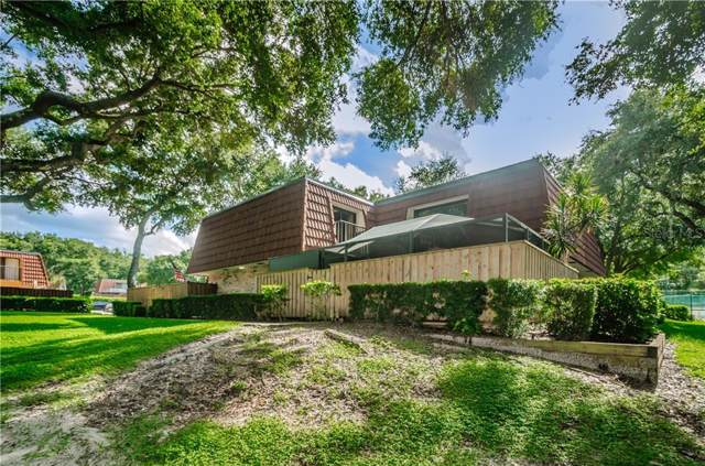 2630 2ND Court, Palm Harbor, FL 34684 (MLS #U8056059) :: Delgado Home Team at Keller Williams