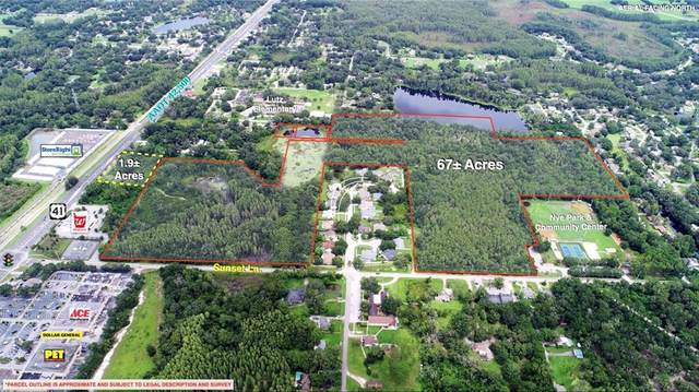 Sunset Lane, Lutz, FL 33549 (MLS #U8057221) :: Team Buky