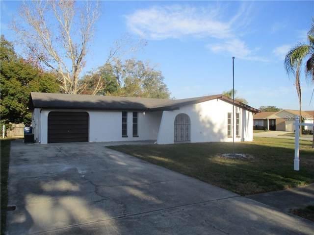 4330 Otter Way, New Port Richey, FL 34653 (MLS #U8057595) :: EXIT King Realty