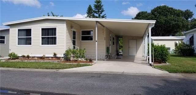 299 Tarpon Lane, Oldsmar, FL 34677 (MLS #U8058574) :: Paolini Properties Group