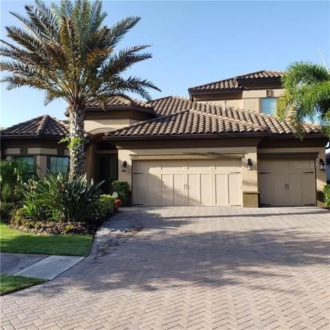 1436 Via Verdi Drive, Palm Harbor, FL 34683 (MLS #U8058651) :: Delgado Home Team at Keller Williams