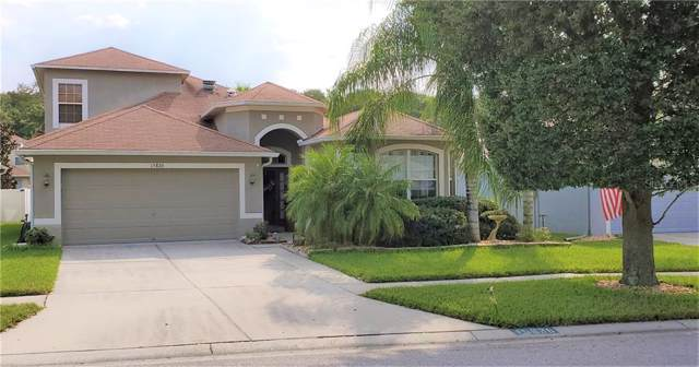 15826 Pond Rush Court, Land O Lakes, FL 34638 (MLS #U8058757) :: Premier Home Experts