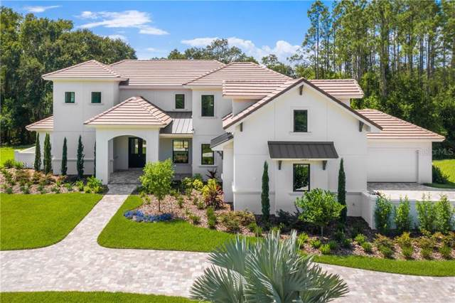 16927 Comunidad De Avila, Lutz, FL 33548 (MLS #U8059113) :: Burwell Real Estate