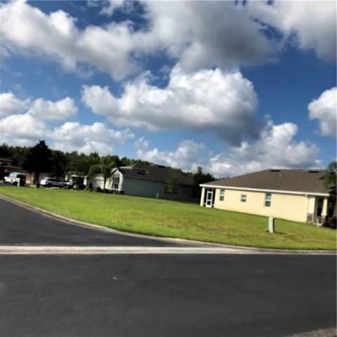 11043 Kiskadee Circle, New Port Richey, FL 34654 (MLS #U8060044) :: Team Pepka