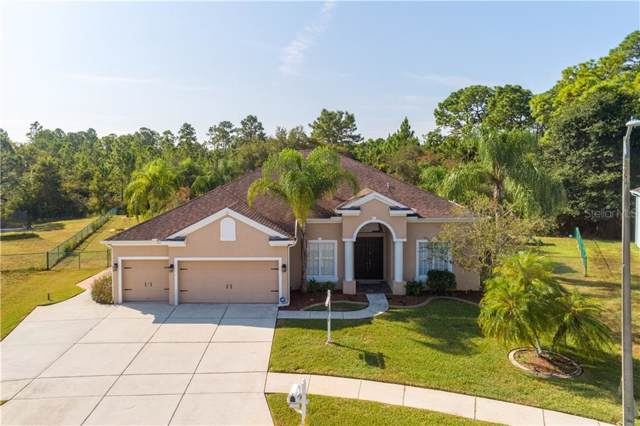 4432 Fort Shaw Drive, New Port Richey, FL 34655 (MLS #U8060194) :: Florida Real Estate Sellers at Keller Williams Realty