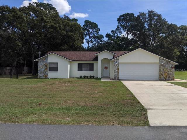 1250 Finland Drive, Spring Hill, FL 34609 (MLS #U8062027) :: Florida Real Estate Sellers at Keller Williams Realty