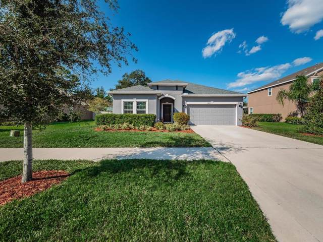 3209 Gina Court, Holiday, FL 34691 (MLS #U8062189) :: Griffin Group