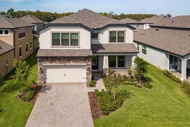 3859 Mellon Drive, Odessa, FL 33556 (MLS #U8062801) :: Premier Home Experts