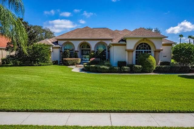 1548 Lake Polo Drive, Odessa, FL 33556 (MLS #U8063593) :: Team Bohannon Keller Williams, Tampa Properties