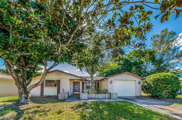 5804 Elena Drive, Holiday, FL 34690 (MLS #U8064446) :: Rabell Realty Group