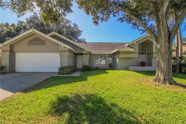1596 Powder Ridge Drive, Palm Harbor, FL 34683 (MLS #U8065233) :: Burwell Real Estate