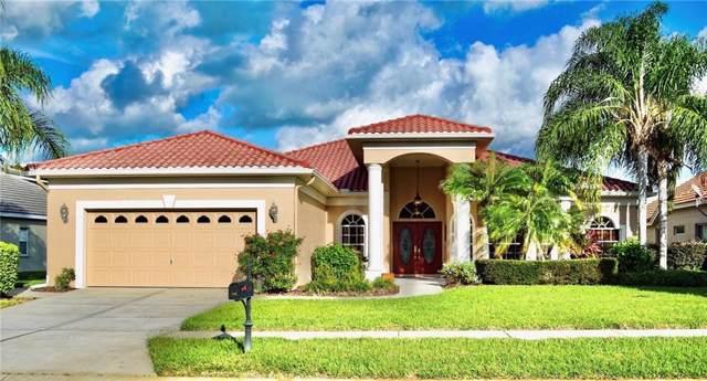 1136 Hagen Drive, Trinity, FL 34655 (MLS #U8065317) :: Delgado Home Team at Keller Williams
