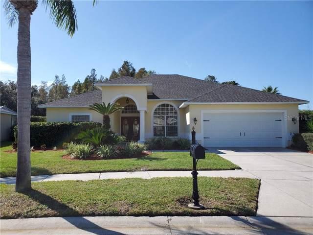 8833 Bel Meadow Way, Trinity, FL 34655 (MLS #U8065464) :: Griffin Group