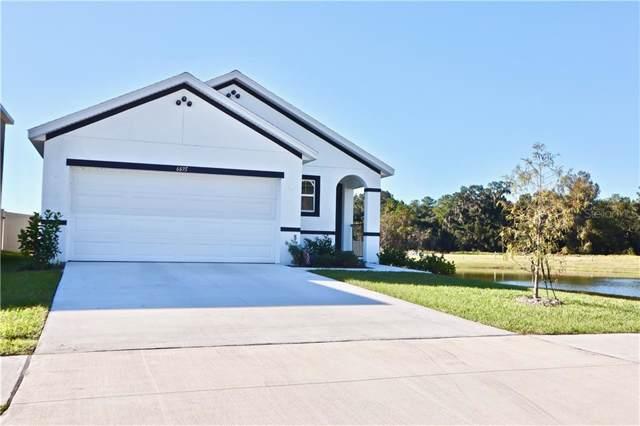 6695 Seaway Drive, Brooksville, FL 34601 (MLS #U8066449) :: Armel Real Estate