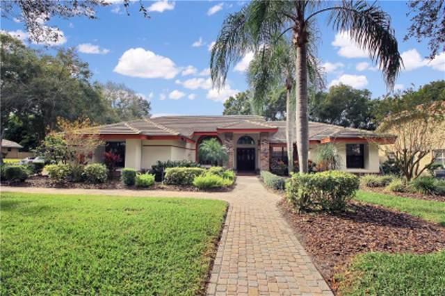 3466 Woodridge Parkway, Palm Harbor, FL 34684 (MLS #U8067352) :: Your Florida House Team