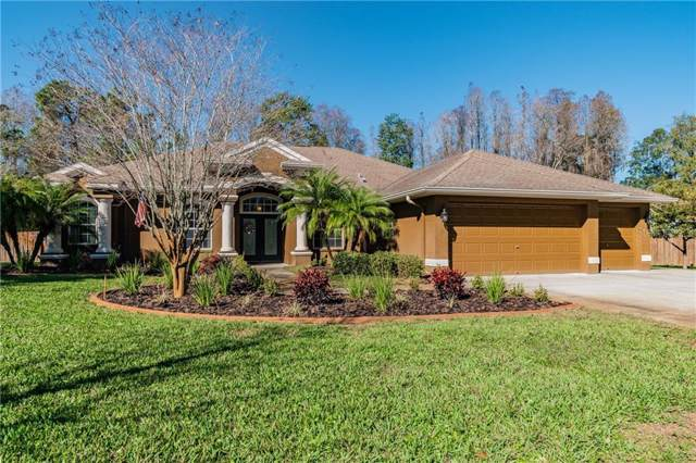 11655 Murcott Way, Land O Lakes, FL 34638 (MLS #U8071814) :: Premier Home Experts