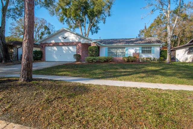 1288 Golden Oak Drive, Tarpon Springs, FL 34689 (MLS #U8072556) :: Delgado Home Team at Keller Williams