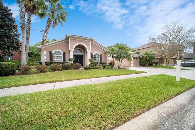 16203 Nikki Lane, Odessa, FL 33556 (MLS #U8072867) :: Team Bohannon Keller Williams, Tampa Properties