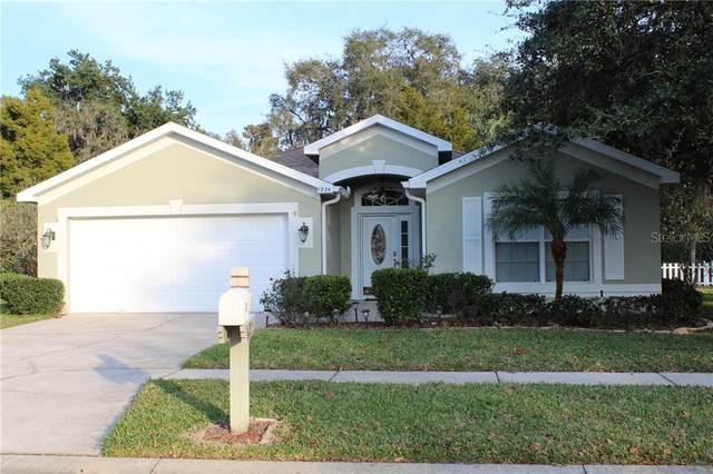 Address Not Published, Odessa, FL 33556 (MLS #U8073507) :: Team Bohannon Keller Williams, Tampa Properties