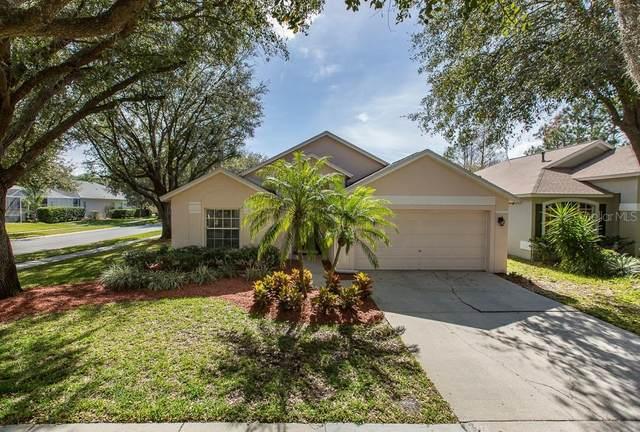 11902 Derbyshire Drive, Tampa, FL 33626 (MLS #U8074767) :: 54 Realty