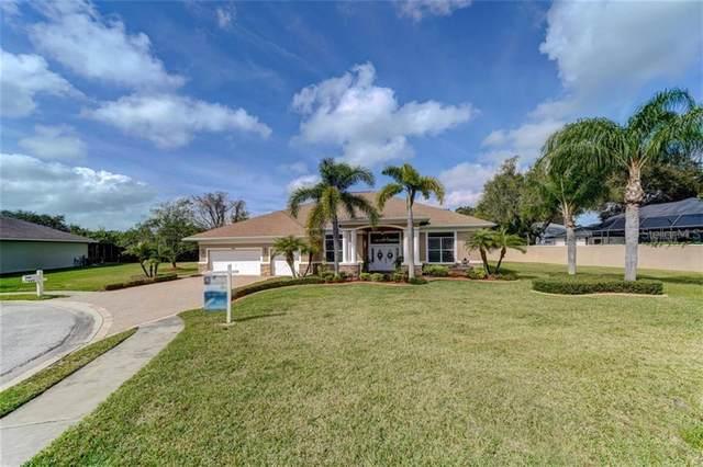 489 Denise Street, Tarpon Springs, FL 34689 (MLS #U8075295) :: Cartwright Realty