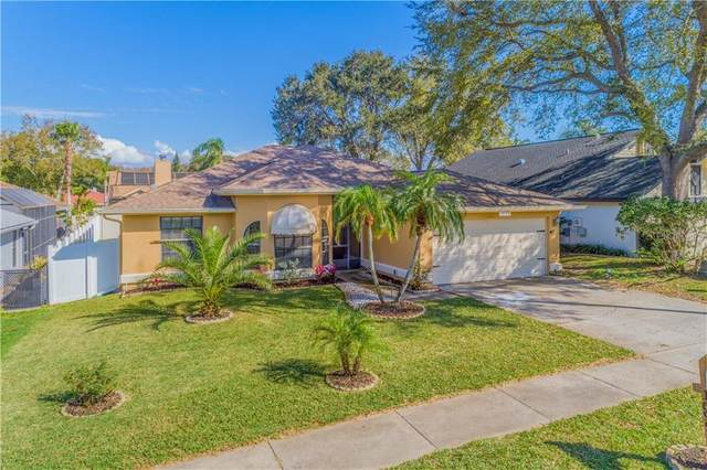 1699 Palomino Drive, Tarpon Springs, FL 34689 (MLS #U8075470) :: Baird Realty Group
