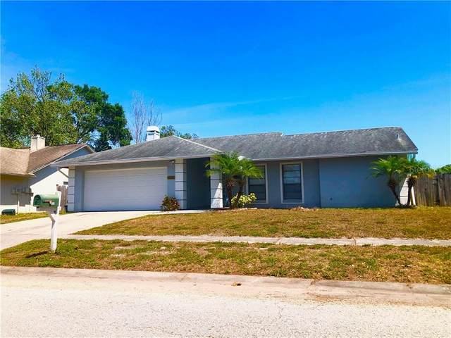 6531 Seafairer Drive, Tampa, FL 33615 (MLS #U8080252) :: Griffin Group