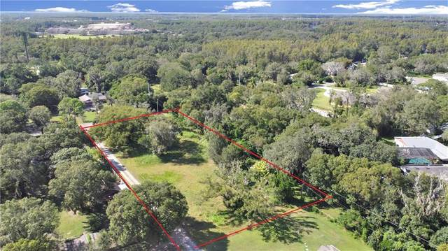 921 Goldie Park Lane, Lutz, FL 33548 (MLS #U8082347) :: Burwell Real Estate