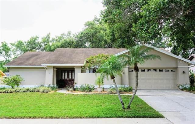 522 Walker Road, Safety Harbor, FL 34695 (MLS #U8084653) :: Charles Rutenberg Realty