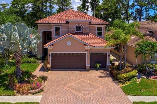 2630 Grand Lakeside Drive, Palm Harbor, FL 34684 (MLS #U8085546) :: Delgado Home Team at Keller Williams