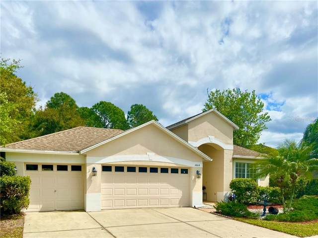 19219 Meadow Pine Drive, Tampa, FL 33647 (MLS #U8086043) :: The Paxton Group