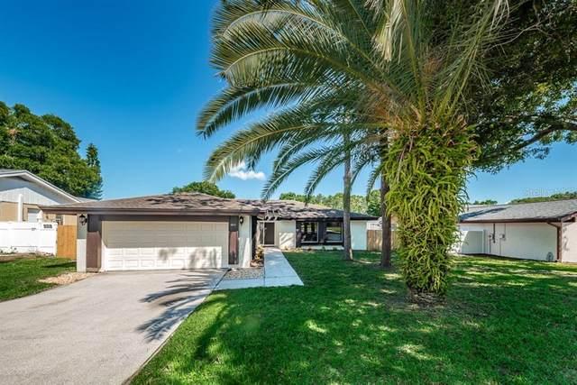 3913 Lake St. George Drive, Palm Harbor, FL 34684 (MLS #U8087974) :: Team Bohannon Keller Williams, Tampa Properties