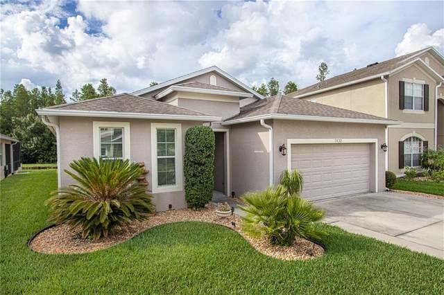 1430 Halapa Way, Trinity, FL 34655 (MLS #U8089972) :: Griffin Group