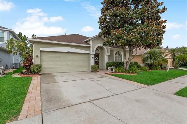 12507 Blazing Star Drive, Tampa, FL 33626 (MLS #U8090611) :: GO Realty