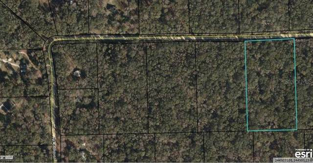 Ne Unassigned, Old Town, FL 32680 (MLS #U8092321) :: CGY Realty