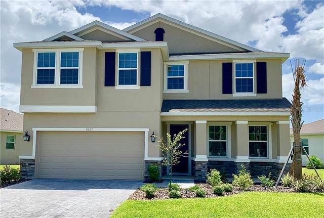 6617 Devesta Loop, Palmetto, FL 34221 (MLS #U8093005) :: EXIT King Realty