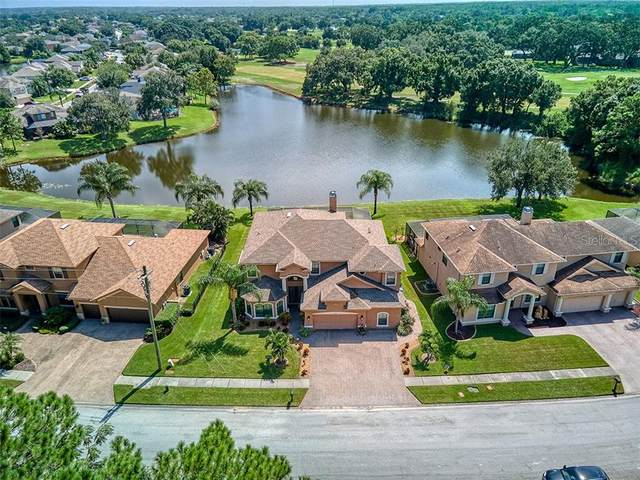 12406 Eagles Entry Drive, Odessa, FL 33556 (MLS #U8095047) :: Team Bohannon Keller Williams, Tampa Properties