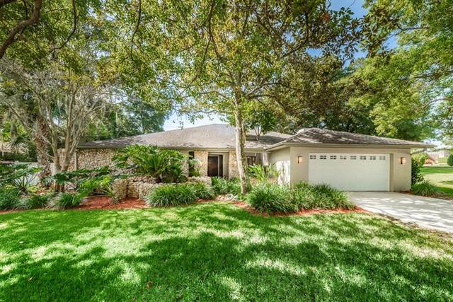 1620 Chestnut Court E, Palm Harbor, FL 34683 (MLS #U8095876) :: Premier Home Experts