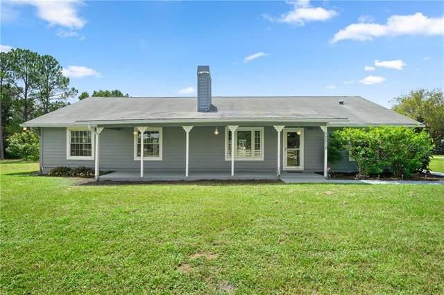 12516 Rawhide Drive, Tampa, FL 33626 (MLS #U8096848) :: Pepine Realty
