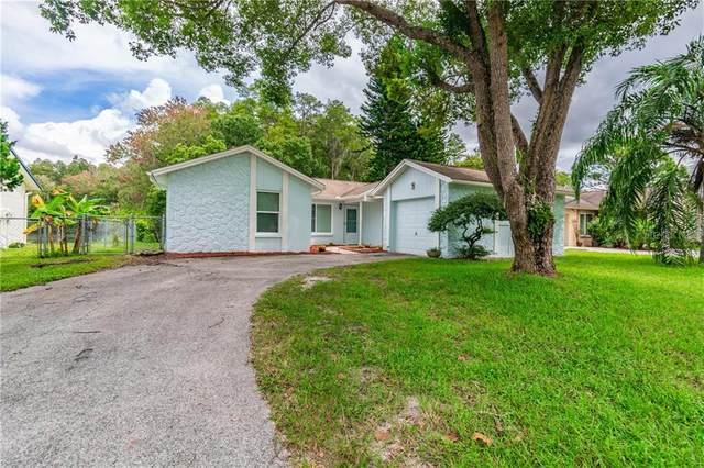 3510 Dellefield Street, New Port Richey, FL 34655 (MLS #U8098248) :: Gate Arty & the Group - Keller Williams Realty Smart