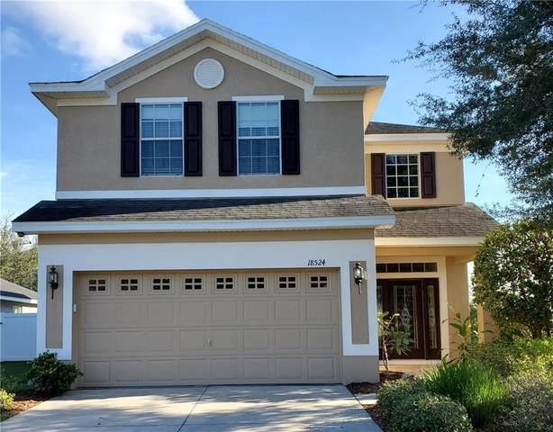 18524 Dajana Avenue, Land O Lakes, FL 34638 (MLS #U8098362) :: Rabell Realty Group