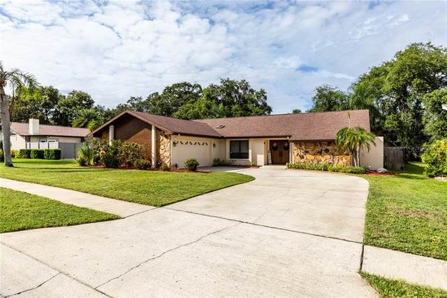 2803 Hamlin Place, Palm Harbor, FL 34684 (MLS #U8099062) :: The Duncan Duo Team