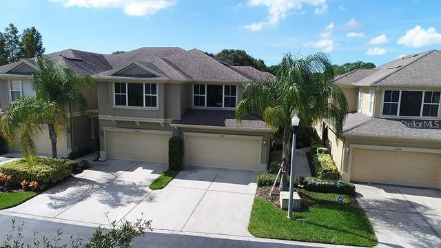 8228 66TH Way N, Pinellas Park, FL 33781 (MLS #U8099370) :: Team Borham at Keller Williams Realty