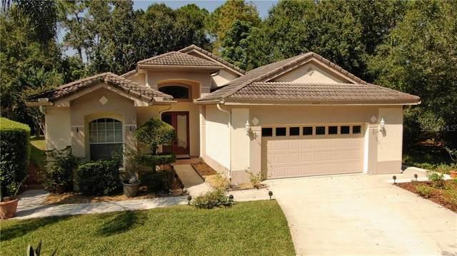 4048 Silk Oak Lane, Palm Harbor, FL 34685 (MLS #U8101464) :: Pepine Realty